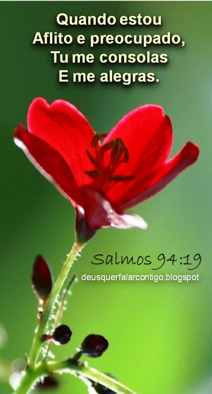 Preferência Mensagem Bíblica Para Perda De Ente Querido Ks24 Ivango