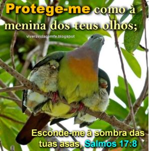 mensagem de  proteção gtyr6mmjiu