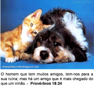 mensagem de amizade 4