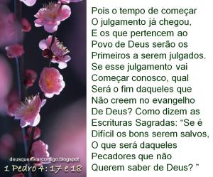 mensagem de sabedoria ffdsree5