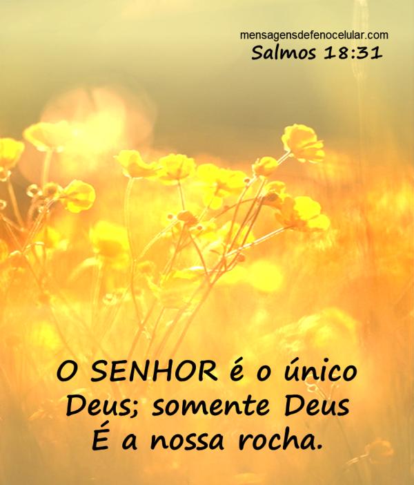 Mensagem de Reflexão - mensagensreflexao.com.br