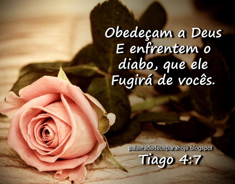 Palavra de Deus para Hoje - Libertação sfdre5mn