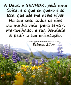 Palavra de Deus para Hoje -sabedoria dsnjtjnm5