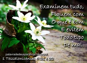 Palavra de Deus para Hoje - sabedoria gfkihn