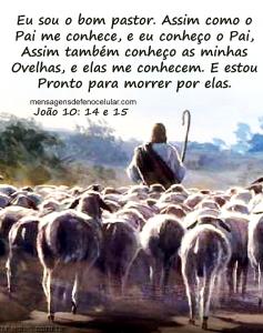 Palavra de Deus para hoje  - Amor de Deus dfter6