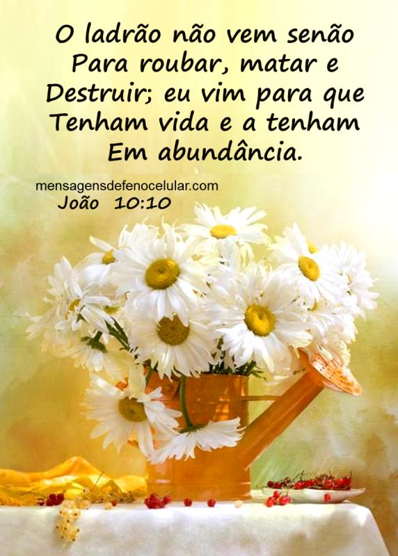 Palavra de Deus para hoje otimismo dfgetjn