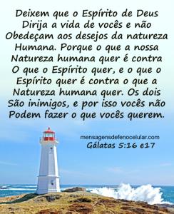 Palavra de Deus para hoje vida nova fnhfgyt75