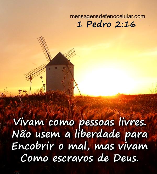 Palavra de Deus para hoje vida nova fsdre56