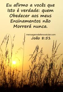 mensagem sobre salvação fsdhbfgt65