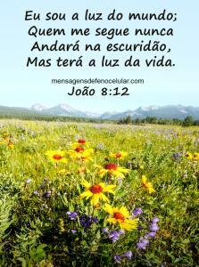 Palavra de Deus para Hoje - otimismo jhusfrte56