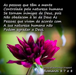 Palavra de Deus para Hoje - sabedoria gfnjmk